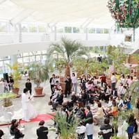 小さな結婚式・挙式・会費制プラン